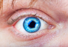 Nahaufnahme des blauen Auges Stockfotos