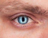 Nahaufnahme des blauen Auges ein Mann Lizenzfreie Stockfotografie