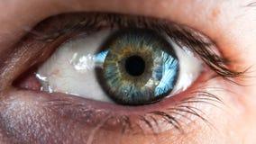 Nahaufnahme des blauen und grünen menschlichen Auges Stockbild