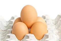 Nahaufnahme des braunen Eies des Huhns Lizenzfreie Stockfotos