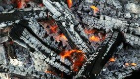 Nahaufnahme des Brennholzes brennend im Feuer, in der Kohle und in der Asche stock video