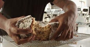 Nahaufnahme des Briochekuchens Beschaffenheit des Kuchens mit Rosinen stock video footage