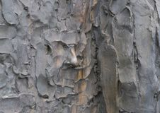 Nahaufnahme des Gesichtes, Freiheits-Skulptur, durch Zenos Frudakis, Philadelphia Lizenzfreie Stockfotografie