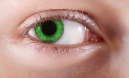 Nahaufnahme des grünen Auges Lizenzfreie Stockbilder