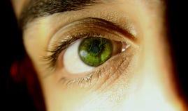 Nahaufnahme des grünen Auges lizenzfreie stockfotos