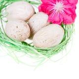 Nahaufnahme des grünen Nestes mit Eiern Lizenzfreie Stockfotos