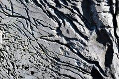 Nahaufnahme des gro?en Felsens an der K?stenlinie am Farbstoff Cove auf Kap Elizabeth, Cumberland County, Maine, Neu-England, US lizenzfreies stockfoto