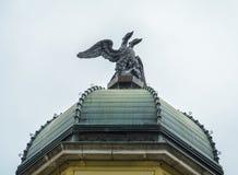 Nahaufnahme des Hauptadlers zwei in Rieka Stockfotos