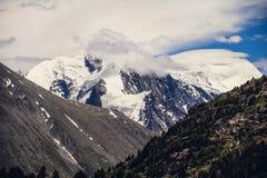 Nahaufnahme des hohen Berges Stockbild