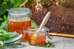 Nahaufnahme des Honigs in einem Glas und in einer Bienenwabe Lizenzfreie Stockbilder