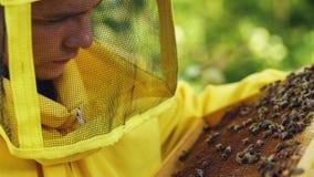 Nahaufnahme des Imkermannes Holzrahmen überprüfend, bevor Honig im Bienenhaus geerntet wird Stockfotos