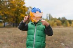 Nahaufnahme des jungen Jungen spielend mit herbstlichen Blättern Stockfoto