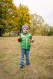 Nahaufnahme des jungen Jungen spielend mit herbstlichen Blättern Stockbild