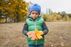 Nahaufnahme des jungen Jungen spielend mit herbstlichen Blättern Lizenzfreie Stockfotografie