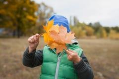 Nahaufnahme des jungen Jungen spielend mit herbstlichen Blättern Lizenzfreies Stockfoto
