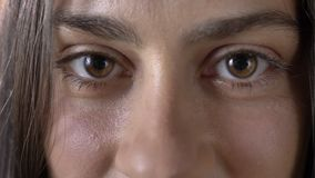 Nahaufnahme des jungen Schönheitsbrauns mustert, Kamera, Gesicht betrachtend der bezaubernden Frau stock video