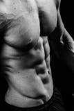 Nahaufnahme des kühlen perfekten sexy starken sinnlichen bloßen Torsos mit ABSbrüsten 6 verpacken Muskelkasten-Schwarzweiss-Studi Lizenzfreie Stockfotografie