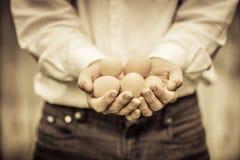 Nahaufnahme des Landwirts Holding Eggs Stockfoto
