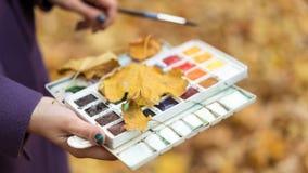 Nahaufnahme des Mädchens die, das Farben und Bürste in den Händen im Herbstpark hält stockbild