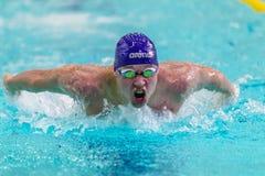 Nahaufnahme des männlichen Athletenschwimmen-Schmetterlingsanschlags im Pool Lizenzfreie Stockfotos