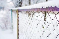 Nahaufnahme des purpurroten Maschenzauns bedeckt im Schnee Stockfotografie