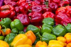 Nahaufnahme des roten, grünen und gelben grünen Pfeffers Stockfotos