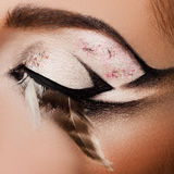 Nahaufnahme des schönen Auges stockfotografie