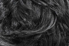 Nahaufnahme des schwarzen Haares Stockbilder