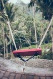 Nahaufnahme des Schwingens im Dschungel von Bali-Insel, Indonesien lizenzfreie stockfotografie