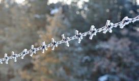 Nahaufnahme des Stacheldrahts im Winter Stockbilder