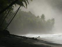Nahaufnahme des Strandes Stockfotos