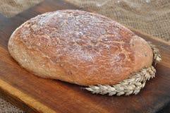 Nahaufnahme des traditionellen selbst gemachten Brotes Lizenzfreies Stockfoto