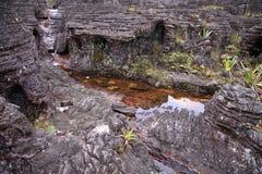 Nahaufnahme des unglaublichen felsigen Geländes mit Pools des Bergs Roraima Stockbild