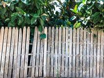Nahaufnahme des vertikalen einfachen Eichenbretterzaunhintergrundes Alte geknotete Bauholzwand Rustikales Muster der Weinlese Lizenzfreie Stockfotos