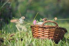 Nahaufnahme des Weidenkorbes auf dem Gebiet füllte mit Wildflowers lizenzfreie stockbilder