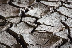 Nahaufnahme die Bodensprünge stockbild