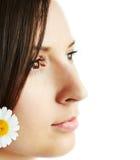 Nahaufnahme ein Profil von Brunette Lizenzfreie Stockbilder