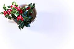 Nahaufnahme einer Blume blauen Liebe in einem Nebel, Nigella-damascena auf den grünen Hintergründen Lizenzfreie Stockfotografie