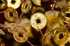 Nahaufnahme einer Goldmünze mit Zeichen auf einem Geldbaum stockbild