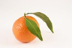Nahaufnahme einer Klementine mit 2 Blättern Stockfoto