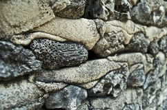 Nahaufnahme einer korallenroten Wand lizenzfreies stockbild