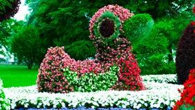Nahaufnahme einer Zahl der Enten gemacht von den Blumen Stockbilder