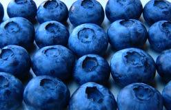 Nahaufnahme eines Bündels frischer und empfindlicher Blaubeeren Lizenzfreies Stockfoto