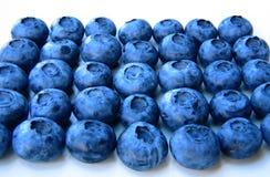 Nahaufnahme eines Bündels frischer und empfindlicher Blaubeeren Stockbilder
