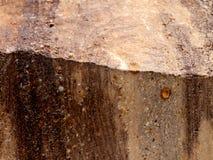 Nahaufnahme eines Felsens poliert, um Beschaffenheitshintergrundspur des Grand- Canyonrandes der Zeit und der braunen Stellen zu  lizenzfreies stockbild