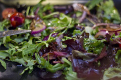 Nahaufnahme eines frischen geschmackvollen Salats stockfoto