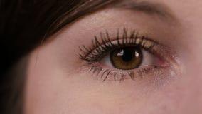 Nahaufnahme eines junge Frau ` s Auges lizenzfreies stockbild