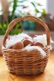 Nahaufnahme eines Korbes mit organischen Hühnereien und Federn Defo Lizenzfreie Stockfotos