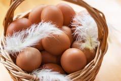 Nahaufnahme eines Korbes mit organischen Hühnereien und Federn Defo Stockfoto