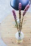 Nahaufnahme eines schönen Blumenstraußes der purpurroten Blenden in einem Glasvase Stockbilder